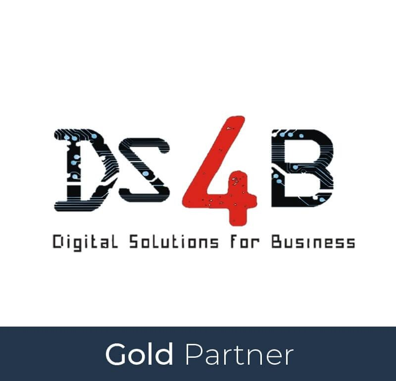 DS4Business